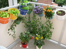 Balcón con las flores y los vehículos Imagen de archivo