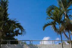 Balcón de las palmeras nublado y cielo Foto de archivo libre de regalías