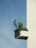 Balcón en Campo de Fiori, Roma Foto de archivo libre de regalías