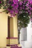 Balcón en Cartagena de Indias Foto de archivo