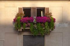 Balcón en la plaza Navona Foto de archivo