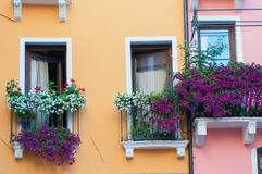 Balcón florecido Fotografía de archivo libre de regalías