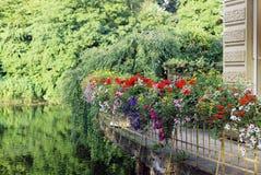 Balcón verde con las flores fotos de archivo