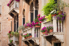 Balcões velhos bonitos da construção com flores coloridas Imagens de Stock Royalty Free