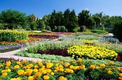 balchik ogród botaniczny Obrazy Stock