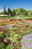 balchikbotanisk trädgård Royaltyfri Fotografi