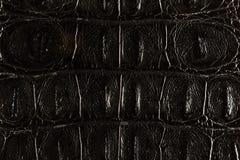 Balck皮革纹理 库存照片