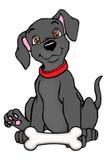 Balck Hund mit dem Knochen Stockfoto