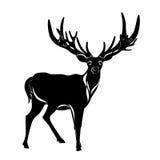 Balck Silhouette Of Deer
