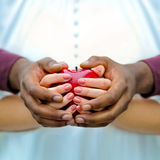 Balck and white hands with a red apple. Hands of a black man and a white woman protecting together a red apple royalty free stock image