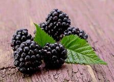 Balckberry fruit closeup Stock Photo