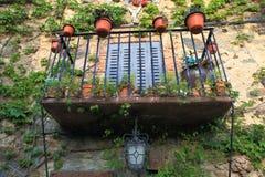 Balcon avec des centrales Photographie stock