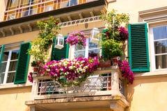 Balcon avec des fleurs à Pise Photographie stock libre de droits