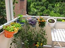 Balcon avec des fleurs et des légumes Image stock