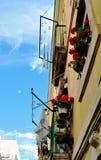 Balcon avec des géraniums et des vêtements se situant dans le jour d'été de travailleur de voisinage avec le ciel bleu Image libre de droits