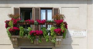 Balcon avec des pots de fleurs dans Piazza Navona, Rome Photographie stock