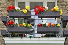 Balcon avec le bégonia coloré fleurissant Photos libres de droits