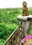 Balcon de ressource avec la vue de vallée, bali Images stock