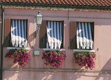 balcon fleuri avec une fenêtre dans la maison et beaucoup des pots de fleur photographie stock libre de droits