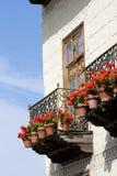 Balcon mit Blumen Stockfoto
