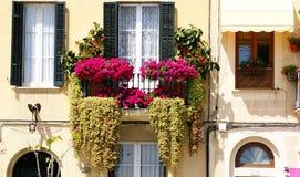 Balcone con conservato in vaso in una facciata Fotografia Stock