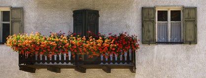 Balcone con i fiori, Nova Levante, Italia Fotografia Stock