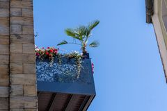 Balcone d'acciaio con i fiori e la palma immagine stock libera da diritti