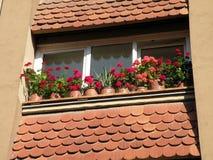 Balcone e fiori Fotografia Stock Libera da Diritti