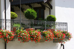 Balcone enorme fiorito Fotografia Stock