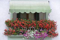 Balcone variopinto con i fiori in Italia Fotografia Stock Libera da Diritti