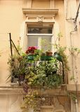 Balconies. Plants growing on the balconies of the narrow streets of  Cagliari on the island of Sardinia, Italy Royalty Free Stock Photography