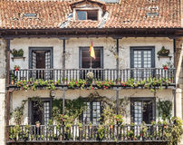 Balconies with potted plants Stock Image