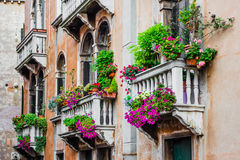 Balconies of residential house in Venice decorated with flowers Stock Photos