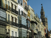 Balconies, Seville. Balconied buildings in the heart of Seville, Spain with the Giralda in the background Royalty Free Stock Photo