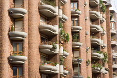 Balconies and windows with plants. Balconies and windows at building's front with plants Stock Photos