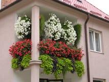Balcony. Flowers on balcony stock image