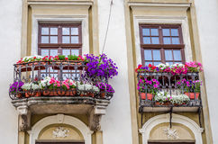 Balcony with blooming flowers in the architectural historic building in the center of Lviv. ю Royalty Free Stock Photo