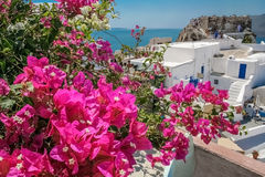 Balcony with bougainvillea on the island of Santorini. Balcony with bougainvillea on a background of an ancient fortress, blue sea and white houses on the island stock images