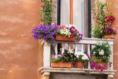 Balcony with colorful flowers Stock Photos