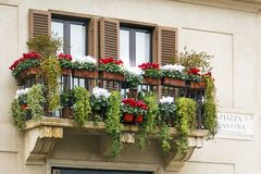 Balcony with colorful flowers in Rome. Balcony with colorful flowers with marble plaque indicating Piazza Navona in Rome Royalty Free Stock Photography