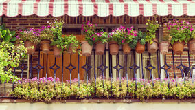 Balcony decorated with beаutiful flowers Stock Images