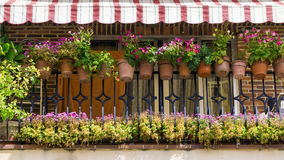 Balcony decorated with beаutiful flowers Royalty Free Stock Photography