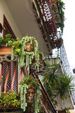 Balcony decorated with plants and special flowerpots Royalty Free Stock Image