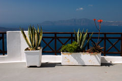 Balcony, Fira (Santorini) Stock Photos