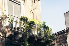 Balcony with flowerpots and house plants in a historic building in Catania, traditional architecture of Sicily, Italy.  royalty free stock photography