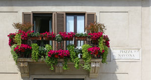 Balcony with flowerpots in Piazza Navona, Rome Stock Photography