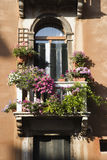 Balcony and Flowers. Low angle view of arched window with balcony and flowers in Venice, Italy. Vertical shot Stock Photography