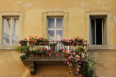 Balcony with flowers. Balcony with red and pink flowers on old yellow apartment building in Rome, Italy Stock Images