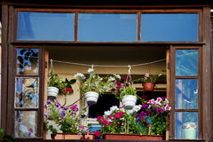 The balcony with flowers blooming Stock Photography