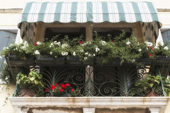 Balcony with flowers in Tuscany Stock Photography